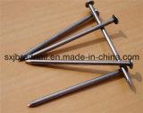 Gemeenschappelijke Round Wire Nails (fabriek/leverancier)