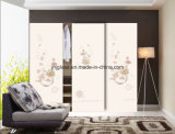 Suministrar el vidrio del guardarropa de 4m m a de 6m m, vidrio del Armoire, vidrio de Garderobe