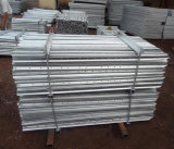 Столб звезды Pickets/1650mm 1800mm стальной y Австралии Hot-DIP гальванизированный