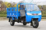 Wright Chinese Diesel Right Hand Drive Tricycle à vendre