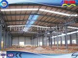 Diseño de construcción prefabricados de estructura de acero de almacén (FLM-038)