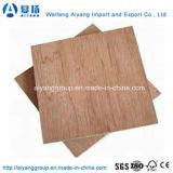 madera contrachapada de la chapa de 6-18m m Okume/Bintangor para los muebles/la decoración