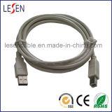 Câble USB 2.0 h à BM