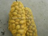 Высокое качество ехпортируя картошку