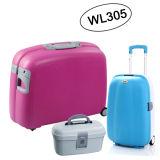2017newセットされる熱い販売の荷物(WL305)