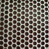 Lamina di metallo perforata con il foro rotondo