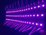 Los módulos LED SMD 5050 coloridos CC12V IP65 Resistente al agua para vallas publicitarias