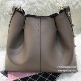 Sacchetto Sh224 di trasporto della donna dei sacchetti di mano delle signore della borsa di modo