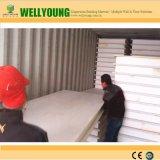 Comitati di parete del panino della schiuma di stirolo del comitato della Cina SIP per le Camere prefabbricate