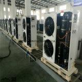 Piezas de la refrigeración de la cámara fría, conservación en cámara frigorífica