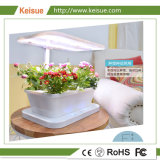 Keisue Micro гидропонное огородничество растущей системы для цветов и листьев растительного происхождения