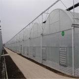 정원 Hydroponic 온실 시스템을%s 가진 유리제 Venlo 온실