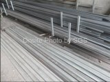 Oeufs automatiques industriels avancés de la ferme 528 de machine d'incubateur d'oeufs