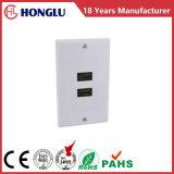 ABS de Plaat van de Muur met HDMI Connector*2