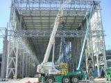 Pre dirigir el edificio de la alameda de compras de la estructura de acero del Largo-Palmo