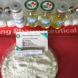 Testar o pó/petróleo de Enanthate da testosterona de E (éster longo) Primoteston