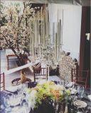 La última boda cristalina Candalbra de la pieza central de la boda para el vector para la decoración del hogar y del hotel del partido de la decoración de la boda