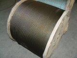 304 7X7 Cabo de Aço Inoxidável / Corda de Pesca / Fio Extra-Fine / Corda do Molde