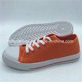 標準的な女性のズック靴の余暇の慰めの履物の靴(ZL1017-18)