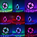 5V de digitale LEIDENE van de Kleur van de Droom Bouw van de Strook 60PCS 2812