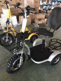 Vespa eléctrica del golf de 3 ruedas para las personas mayores/los ancianos
