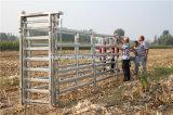 熱い浸された電流を通された経済の頑丈な牛クラッシュ(CCS0)