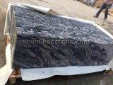 Natuurlijke Aders/het Zwarte Graniet van China Juparana van de Kleur voor Vloer