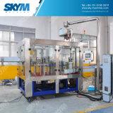 China-Hersteller-schlüsselfertige Trinkwasser-Abfüllanlage