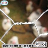 ヨーロッパのために囲うウサギのための六角形の金属線の網