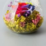 Regalo preservado secado hecho a mano de la flor para la decoración