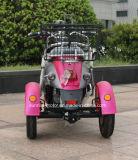 小さい電気3つの車輪のスクーター