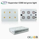 COB crecer serie LED de luz con chips CREE