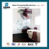 샤워실 유리 문을%s 유리를 인쇄하는 유럽 형식 디지털