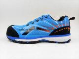 Mischungs-Farbe TPU Sports Art Licht konzipierte Seguridad Fußbekleidung (S003)