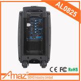Alto-falantes amplificados de gama total de 2 vias Portable DJ/PA Sistema de alto-falante com dois microfones/ USB/Bluetooth