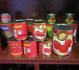 De hete Verkopende Verse Uitstekende Kwaliteit Ingeblikte Tomatenpuree van het Gewas
