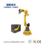 금속을%s 중국 제조 LMR 3D 로봇 Laser 절단기