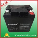 Batterie hohe des Batterie-Laterne-Solarhauptsystems-12V24ah für guten Telekommunikationspreis UPS-ENV