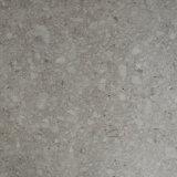 600X600 Foshan Tile el aspecto de su uso en casa de piedra de granito terrazo
