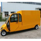 Automobile elettrica di Hotsale con uso pratico per 2 passeggeri
