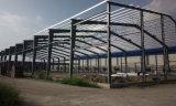 Soportes de acero estructural de las estructuras de acero con grandes Span