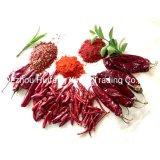 Het rode Poeder van de Spaanse peper/het Poeder/de Paprika van het Capsicum