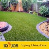 Falsos populares para jardines de césped (TJ-1500)