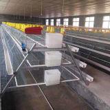 Gaiolas da gaiola de galinha para o equipamento das aves domésticas da galinha da camada