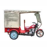 Tricycle/Three Rad-Motorrad (SP110ZK-4)