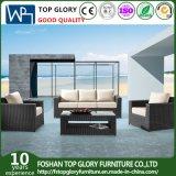 Напольные комплекты мебели ротанга патио и софы сада (TG-804)