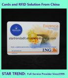 Cartão de Fidelidade Club Card com cores de tarja magnética para a adesão