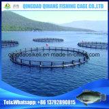 、水産養殖のケージ浮かぶ、沖合いの魚のケージ栽培漁業のケージ