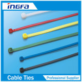 Natuurlijke Band van de Kabel van de Pen van het roestvrij staal de Nylon