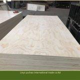 Contre-plaqué de pin de qualité pour les meubles et la décoration